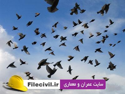 مقاله انگلیسی الگوریتم جامعه پرندگان